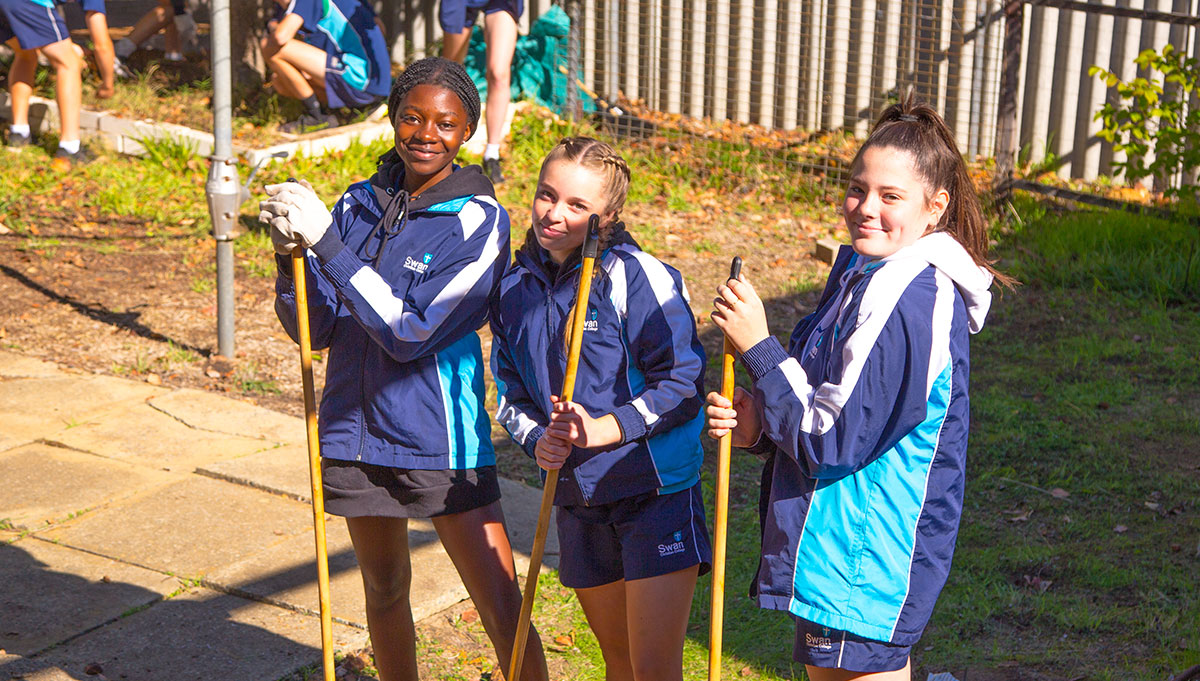 Image for Year 9 Community Service Day